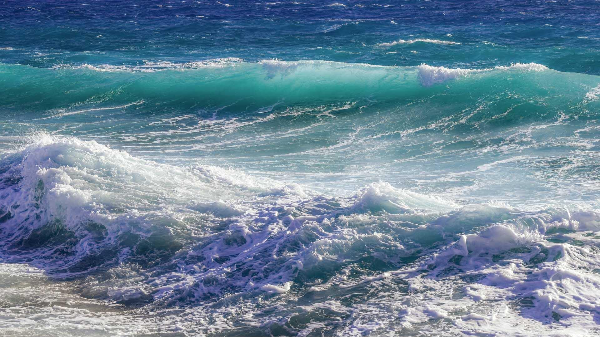 Presenta en COP25 informe sobre descenso de oxígeno en océanos — UICN