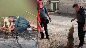 Perro abandonado agradece con tiernos 'abrazos' a policías que lo salvaron de ahogarse
