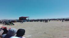 Remate de ganados en el distrito de Coata, generó aglomeración de cientos de personas