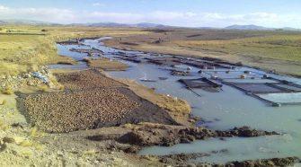 Descontaminación del río Zapatilla