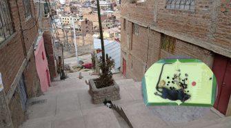 Presencia de ratas en avenida Alto Alianza-Puno