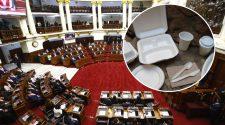 Proyecto de ley sobre uso del Tecnopor